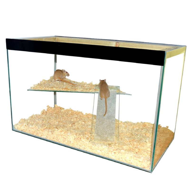 "Hamster , Gerbil, Mice Tank with lid and shelf and ladder - tall with wide shelf 24"" x 15"" x 12"""